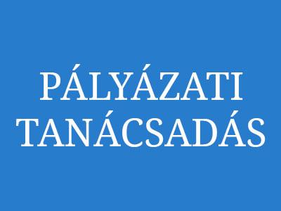 palyazati-tanacsadas-2
